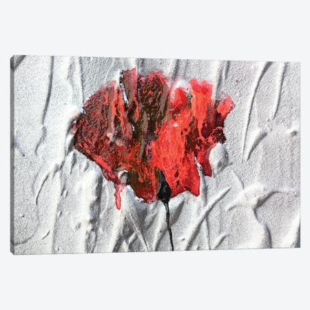Fiore Canvas Print #DOM160} by Donatella Marraoni Canvas Wall Art