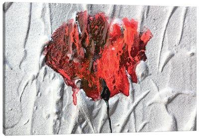 Fiore Canvas Art Print