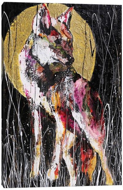 Dillo Alla Luna Canvas Art Print
