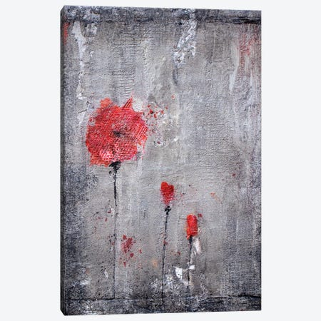 Poppies And Cement Canvas Print #DOM35} by Donatella Marraoni Canvas Art