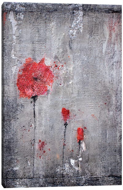 Poppies And Cement Canvas Art Print