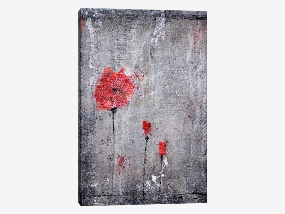 Poppies And Cement by Donatella Marraoni 1-piece Canvas Print