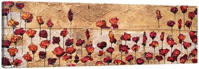 Poppies Oizzontale Segatura Canvas Art Print