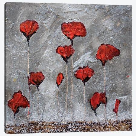 Poppies On Cardoard Canvas Canvas Print #DOM38} by Donatella Marraoni Art Print