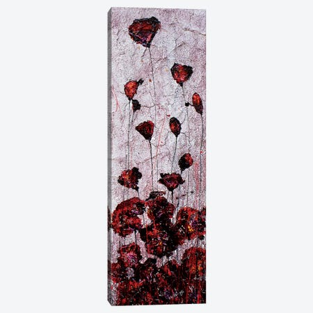 Poppies Sand Canvas Print #DOM40} by Donatella Marraoni Canvas Artwork
