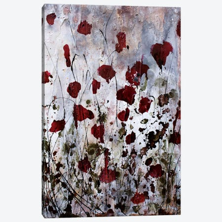Poppies, Red Flowers Canvas Print #DOM42} by Donatella Marraoni Canvas Art