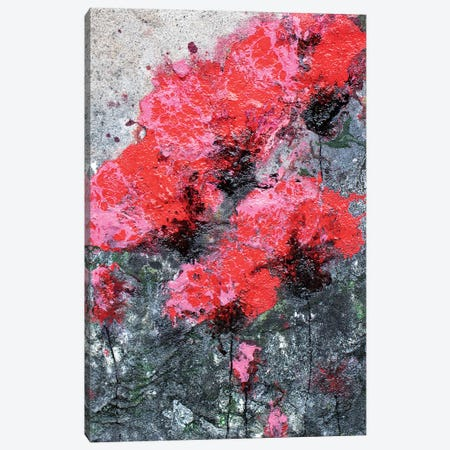 Pink Red Love And Poppies Canvas Print #DOM69} by Donatella Marraoni Canvas Art