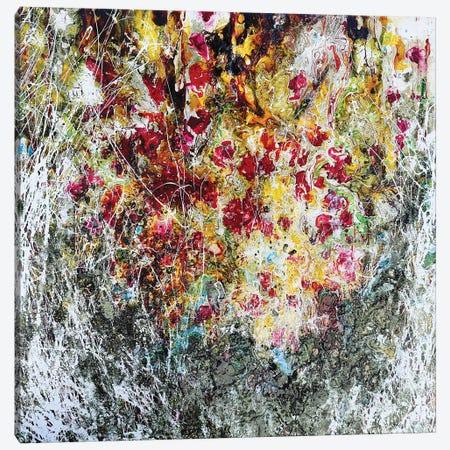 Poppies Yellow Canvas Print #DOM95} by Donatella Marraoni Canvas Wall Art