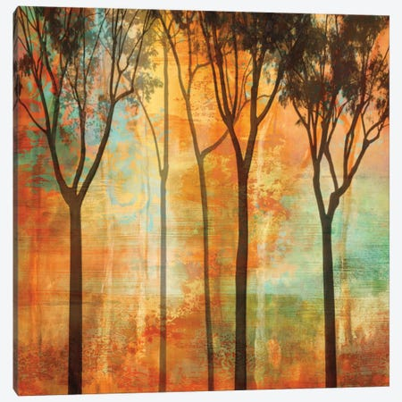 Magical Forest II Canvas Print #DON100} by Chris Donovan Canvas Artwork