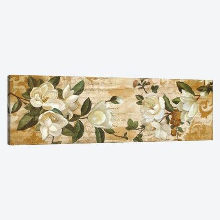 Magnolia Romance Canvas Print #DON101} by Chris Donovan Canvas Art