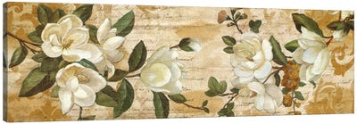 Magnolia Romance Canvas Art Print