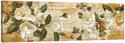 Magnolia Romance Canvas Art Print