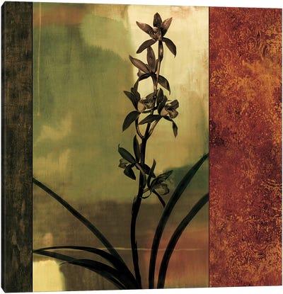 Mesmerized I Canvas Art Print
