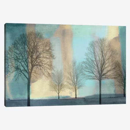 Misty Morning I Canvas Print #DON105} by Chris Donovan Canvas Art Print