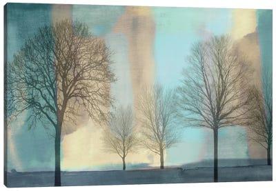 Misty Morning I Canvas Art Print