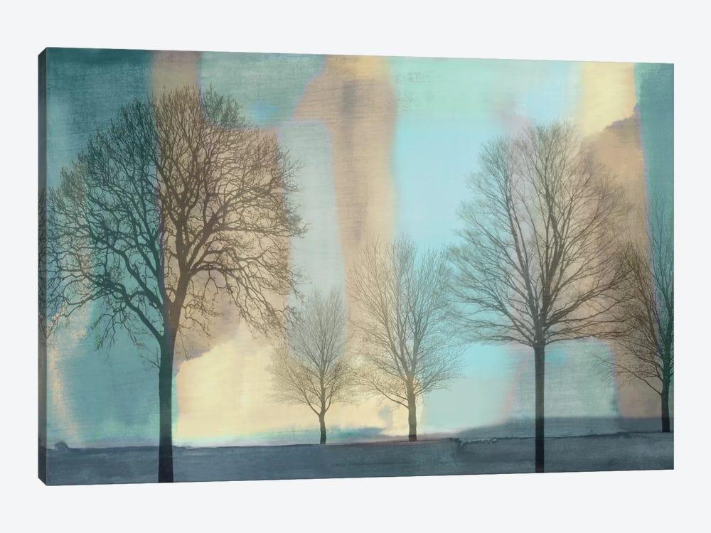 Misty Morning I by Chris Donovan 1-piece Canvas Art