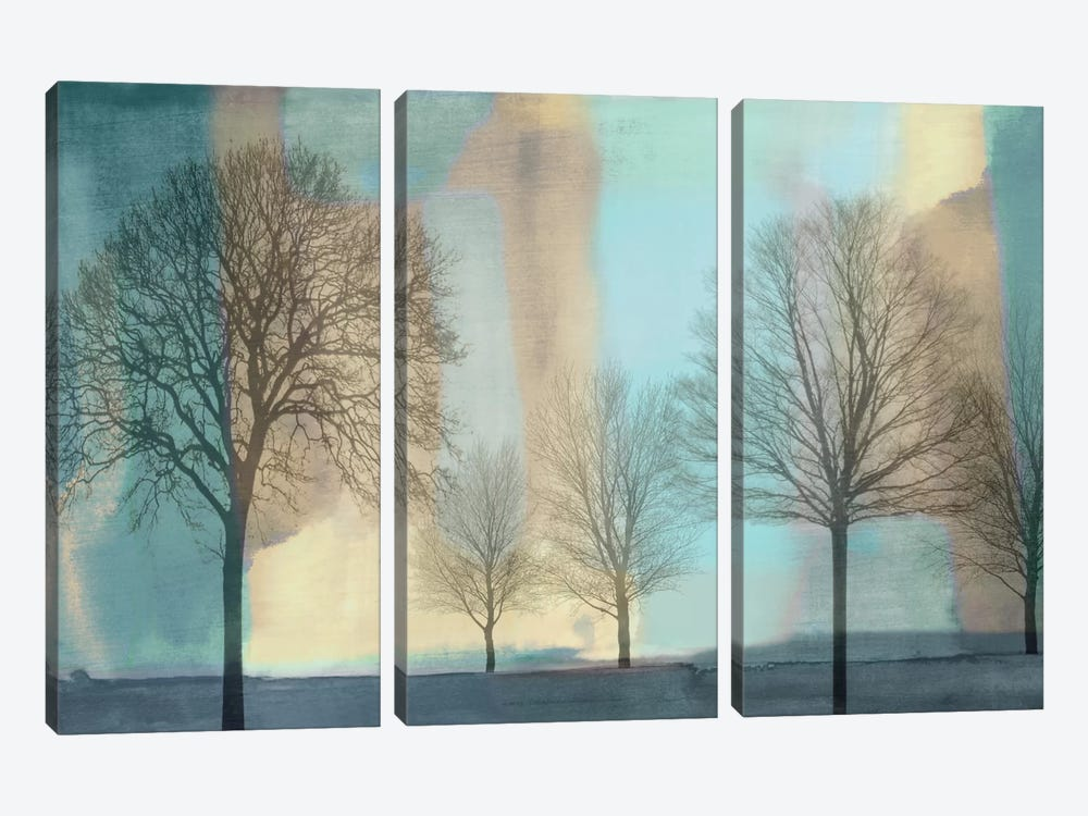 Misty Morning I by Chris Donovan 3-piece Canvas Artwork
