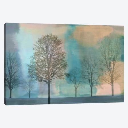 Misty Morning II Canvas Print #DON106} by Chris Donovan Canvas Art Print