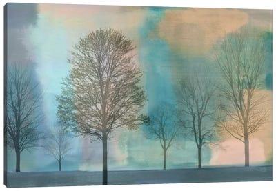 Misty Morning II Canvas Art Print