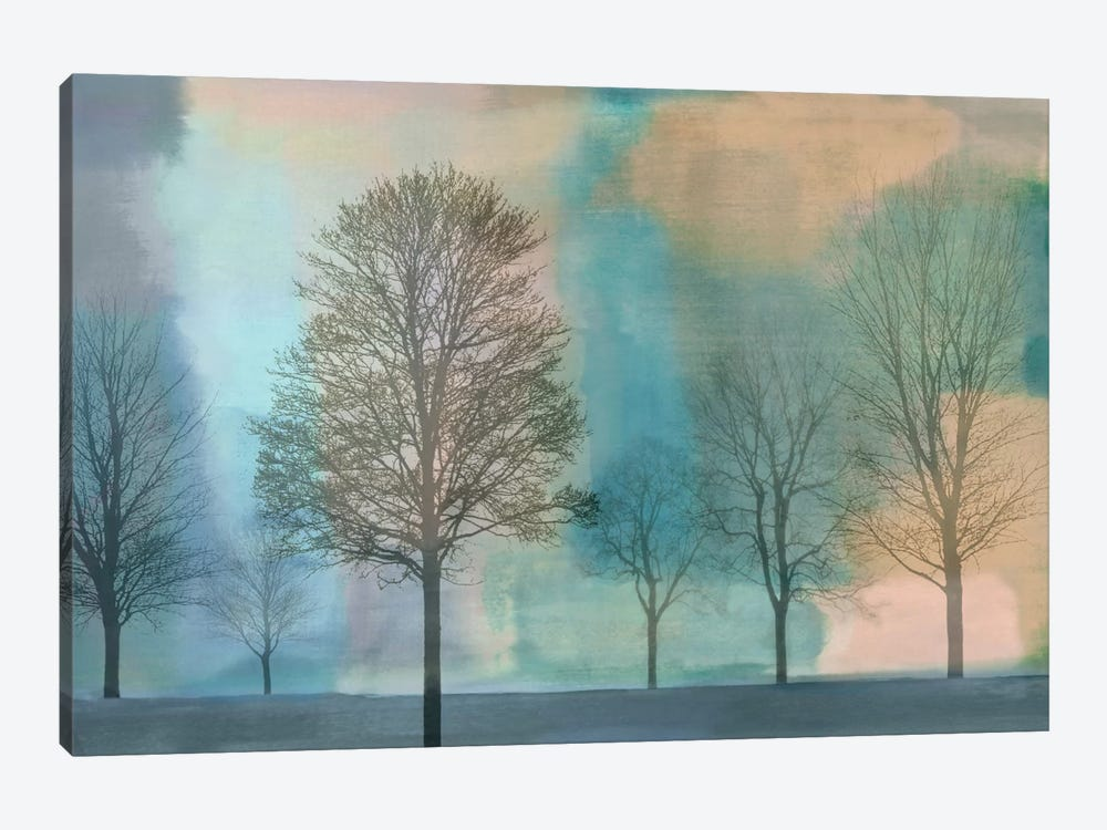 Misty Morning II by Chris Donovan 1-piece Canvas Print
