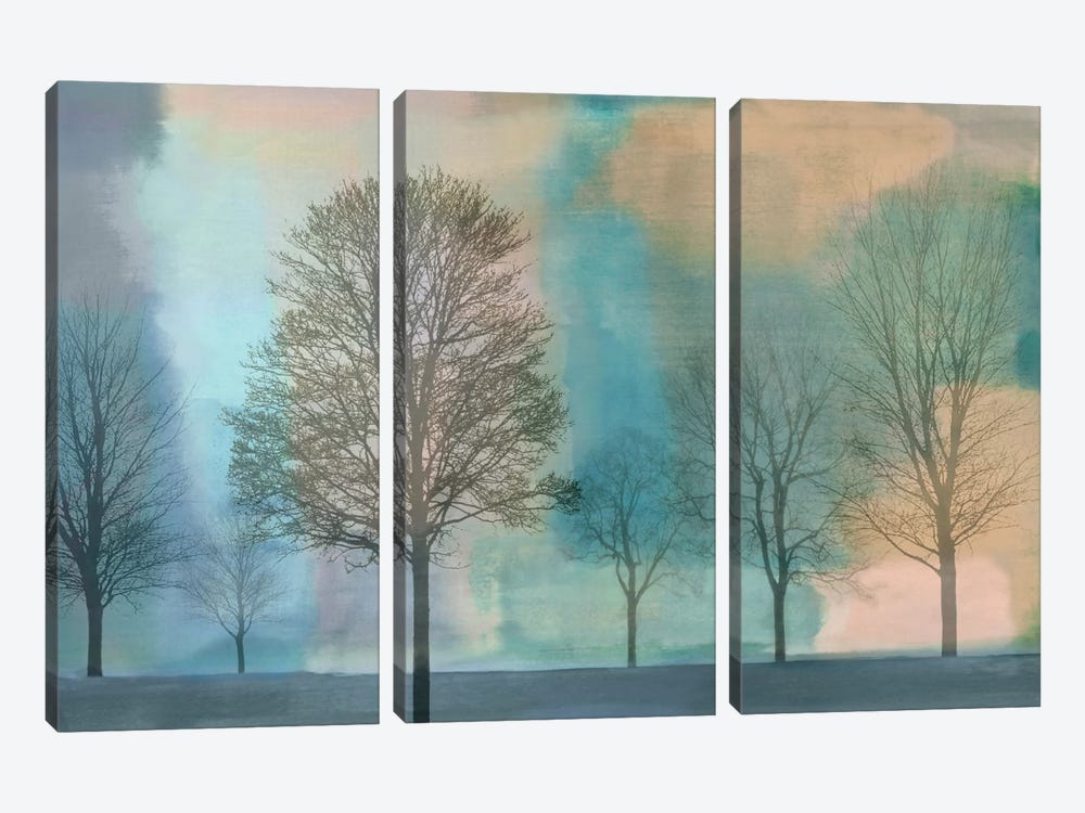Misty Morning II by Chris Donovan 3-piece Canvas Print