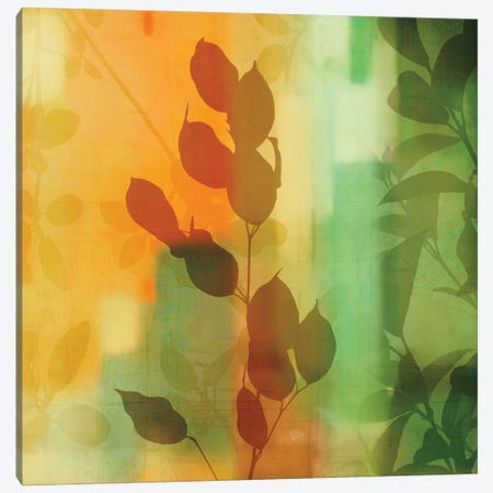 Nature's Glow II Canvas Print #DON113} by Chris Donovan Canvas Art Print