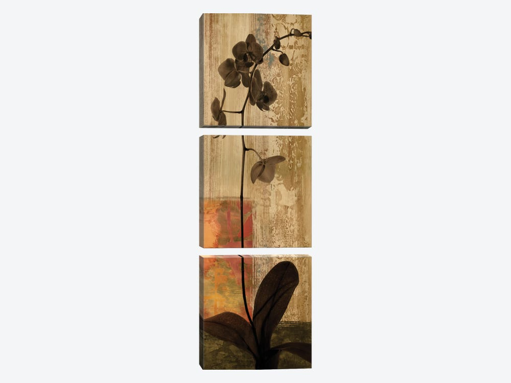 Numinous I by Chris Donovan 3-piece Canvas Wall Art