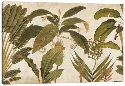 Palm Medley Canvas Art Print