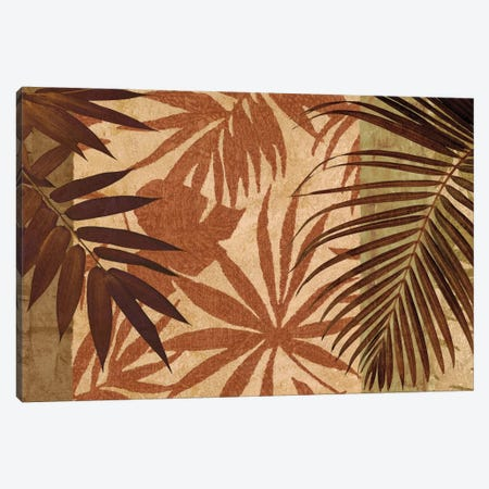Palm Treasure Canvas Print #DON123} by Chris Donovan Canvas Art