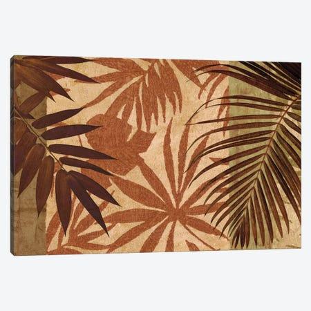Palm Treasure Canvas Print #DON123} by Chris Donovan Canvas Art