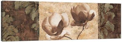 Quintessence II Canvas Art Print