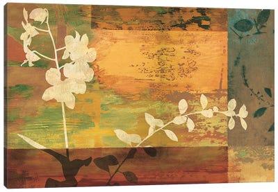 Shambala II Canvas Print #DON139
