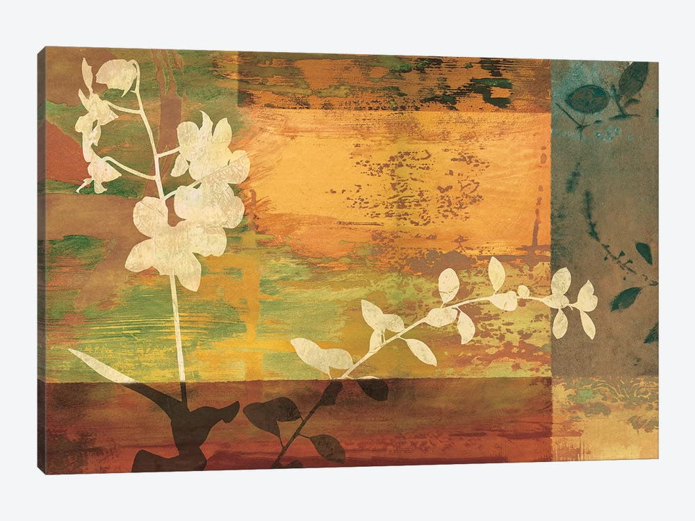 Shambala II by Chris Donovan 1-piece Canvas Print