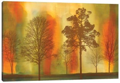 Sunset I Canvas Print #DON144