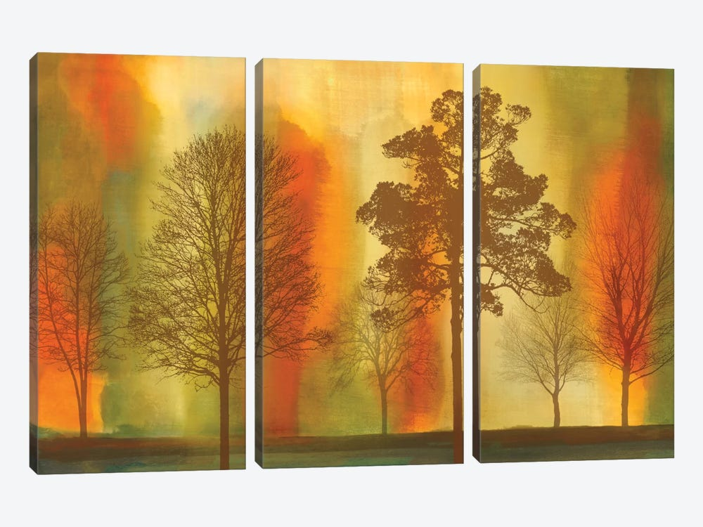 Sunset I by Chris Donovan 3-piece Canvas Print