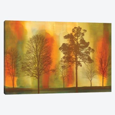 Sunset I Canvas Print #DON144} by Chris Donovan Art Print