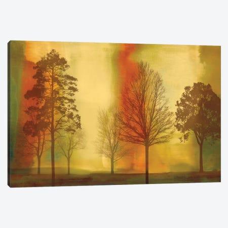 Sunset II Canvas Print #DON145} by Chris Donovan Canvas Print