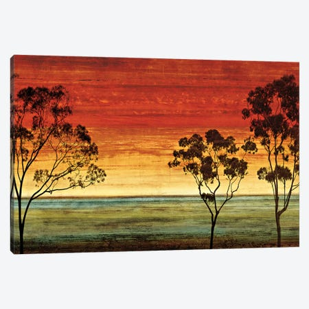 Sunset Vista I Canvas Print #DON146} by Chris Donovan Art Print