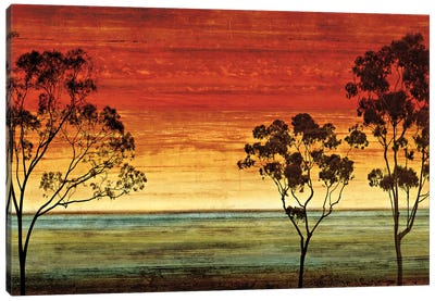 Sunset Vista I Canvas Art Print