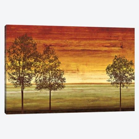 Sunset Vista II Canvas Print #DON147} by Chris Donovan Canvas Art Print