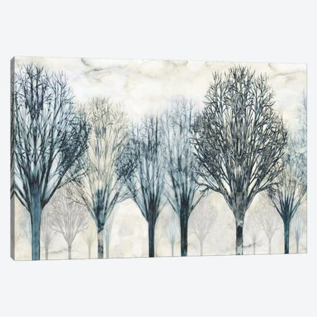 The Grove Canvas Print #DON152} by Chris Donovan Art Print
