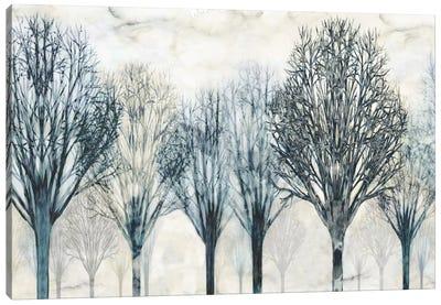 The Grove Canvas Print #DON152