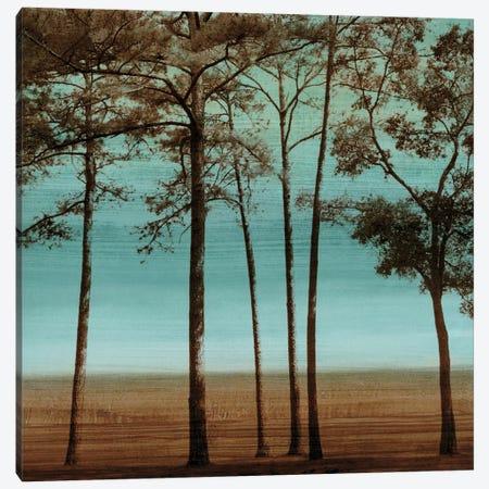 Azure I Canvas Print #DON15} by Chris Donovan Canvas Print
