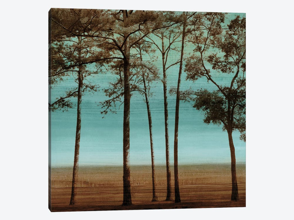 Azure I by Chris Donovan 1-piece Canvas Art Print
