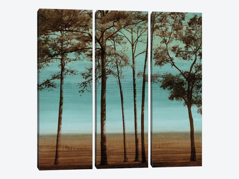 Azure I by Chris Donovan 3-piece Art Print
