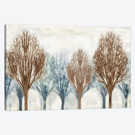 Through The Woods I Canvas Print #DON160} by Chris Donovan Canvas Wall Art