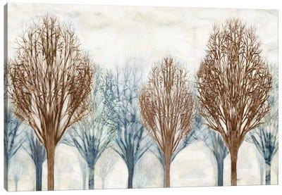 Through The Woods I Canvas Art Print