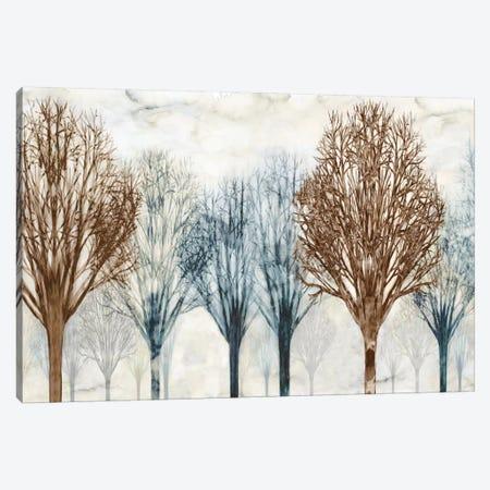 Through The Woods II Canvas Print #DON161} by Chris Donovan Canvas Artwork
