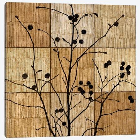 Tree Silhouette I Canvas Print #DON164} by Chris Donovan Canvas Art Print