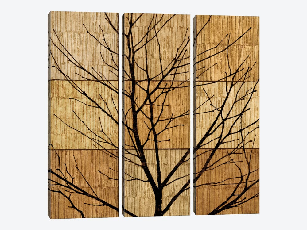 Tree Silhouette II by Chris Donovan 3-piece Canvas Art